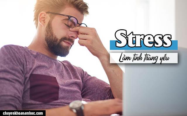 stress là nguyên nhân làm tinh trùng yếu
