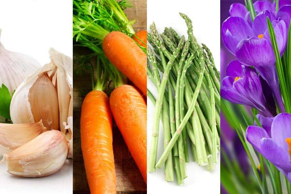 Mẹo chữa rối loạn cương dương từ thực phẩm