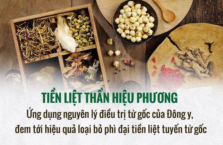 phi-dai-tien-liet-tuyen-8